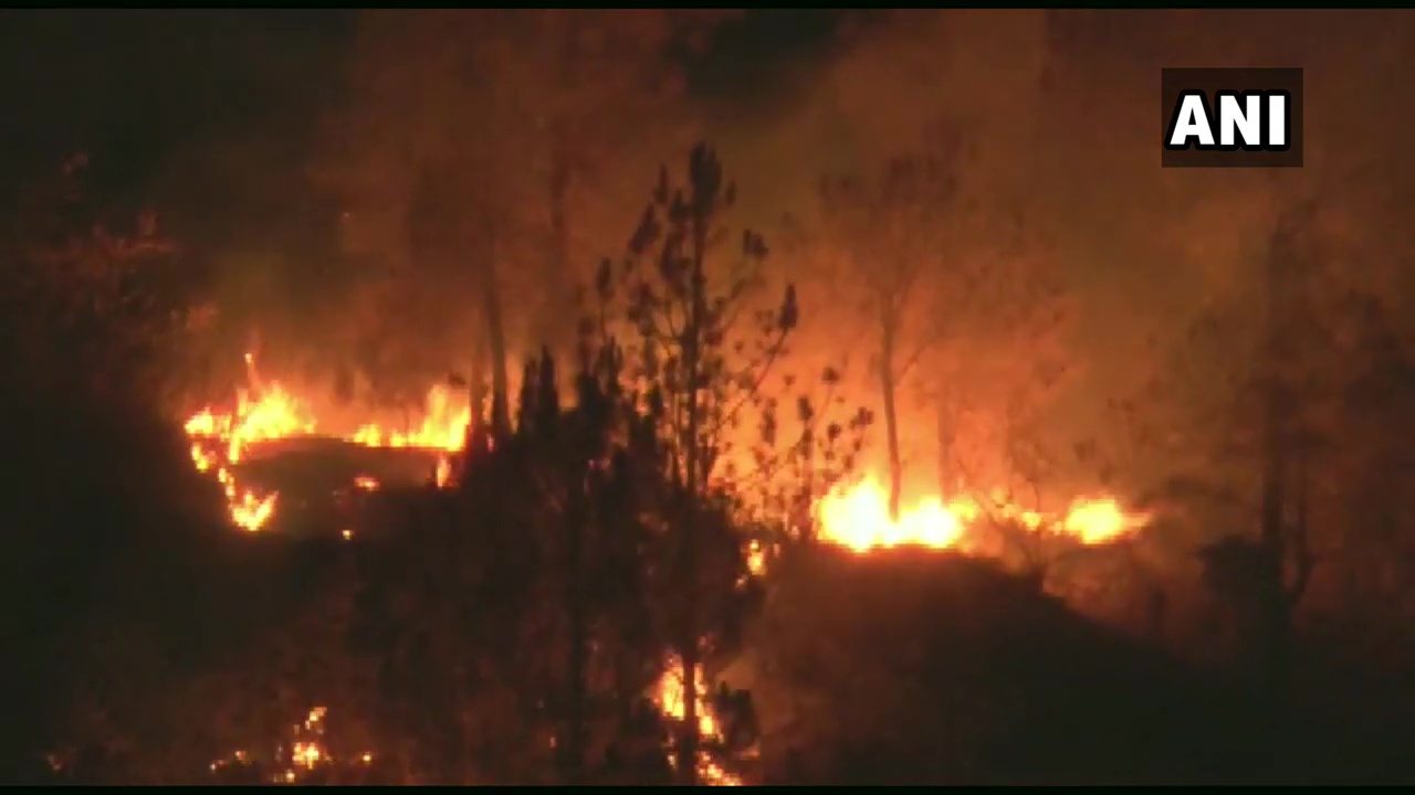 जंगल आपदा: श्रीनगर-खोला के जंगलों में आग, लगी या लगाई गई? विभाग के जवाब का इंतजार