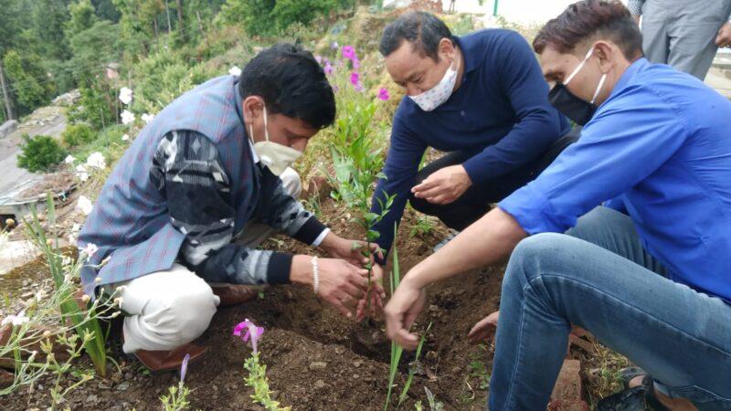 विश्व पर्यावरण दिवस पर डीएम पौड़ी ने खण्डूसैंण बगीचे में किया माल्टा का वृक्षारोपण