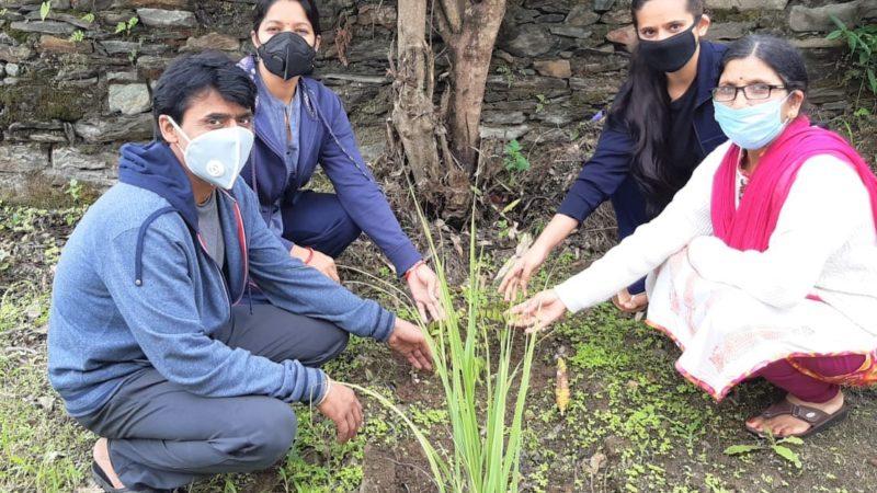 चन्द्रबदनी महाविद्यालय में वृक्षारोपण कर शहीद श्रीदेव सुमन जी को किया गया नमन