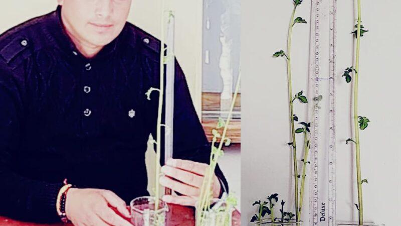 गज़ब: भरत ने हाइड्रोपोनिक्स तकनीक  से प्रयोगशाला में उगाये आलू के पौधे