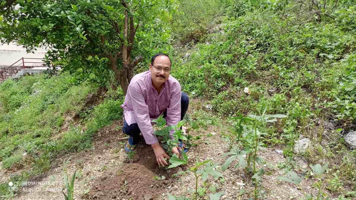 कुलपति डॉक्टर ध्यानी ने लगाया पारिजात का पौधा, जानिए कारण और महत्व
