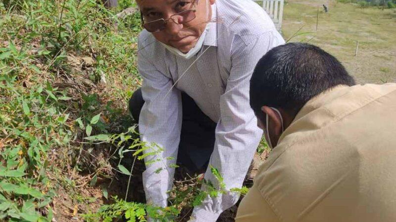 अटल उत्कृष्ट विद्यालय राइंका पौड़ी खाल का शिक्षा मंत्री ने किया वर्चुअल उद्घाटन
