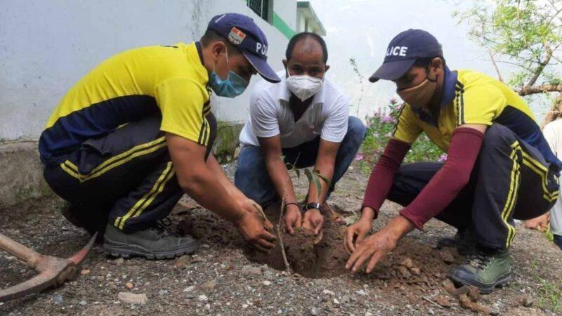 एसडीआरएफ ने व्यासी गांव व स्कूल में किया वृक्षारोपण
