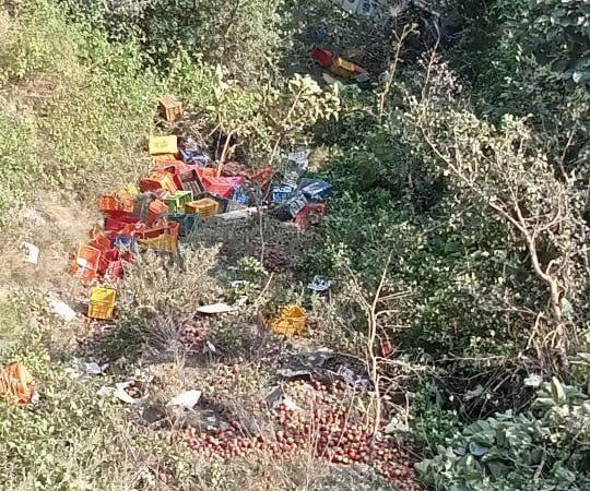 पिकअप दुर्घटना में चालक की मौत